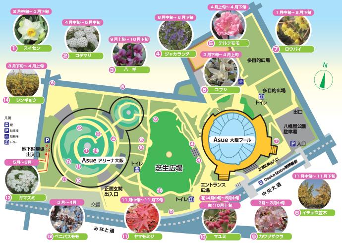 八幡屋公園開花マップ